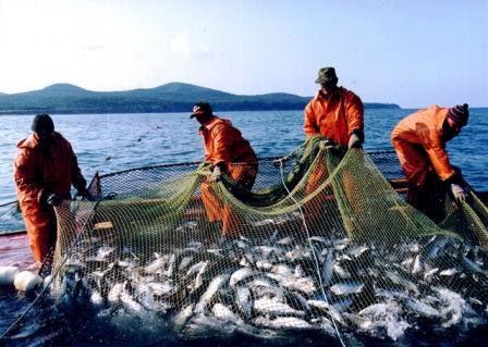 способы ловли рыбы сетью
